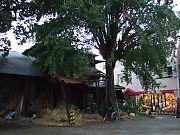 20051030-12