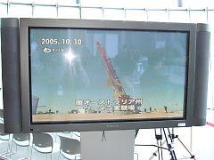 2006041216
