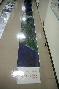 2008102606